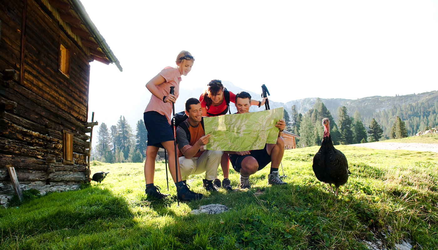 some tourists on a meadow in front of a hut look at a hiking map